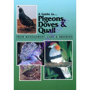 A Guide to Pigeons, Doves & Quail: Their Management, Care & Breeding: by Dr. Danny Brown (Author)