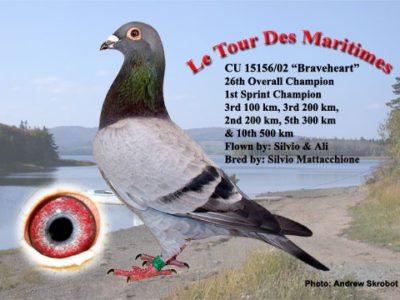 Le Tour Des Maritimes