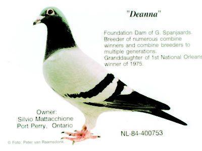 Deanna Foundation of G. Spanjaards