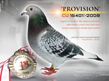 Racing Pigeon - Winner - Empire Classic 2008